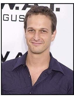 "Josh Charles at the ""S.W.A.T."" premiere"